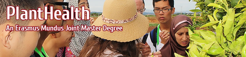 Joint Master Degree in Plant Health in Sustainable Cropping Systems