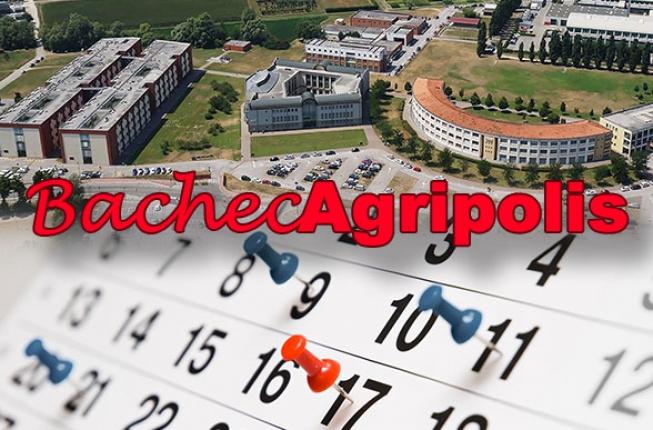 Collegamento a BachecAgripolis