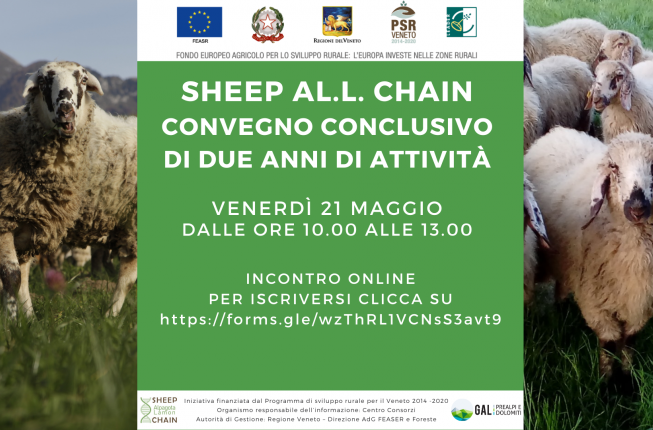 Collegamento a Convegno conclusivo SHEEP AL.L. CHAIN