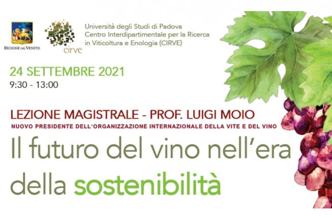 Collegamento a Il futuro del vino nell'era della sostenibilità